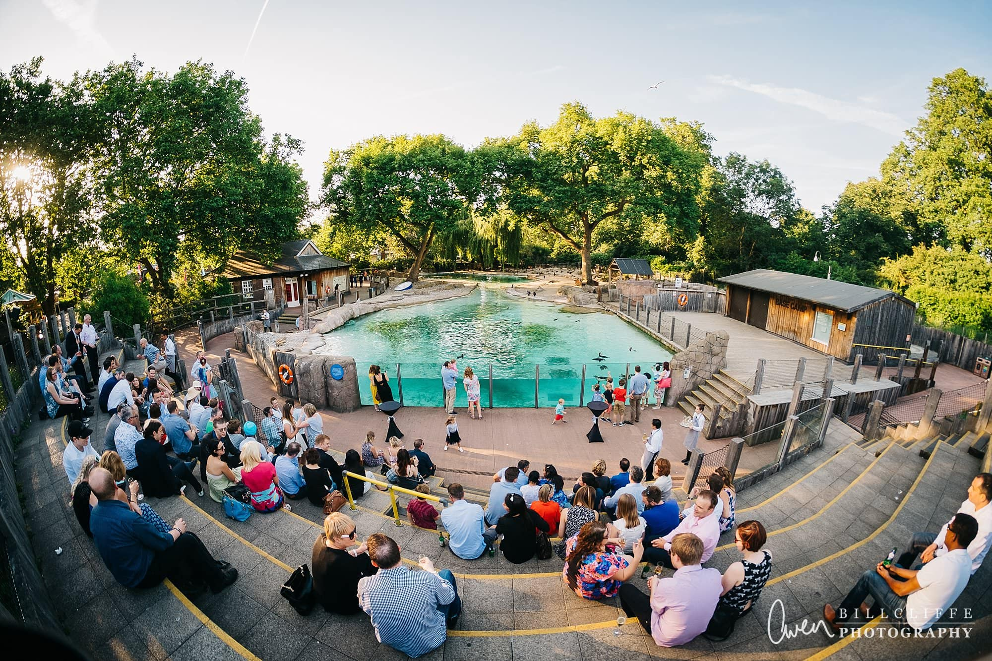 london event photographer zsl london zoo 1706 028 - A Party with the Penguins at London Zoo